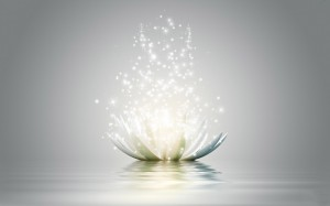 lotus-flower-3d-hd-wallpapers